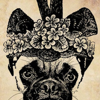 fancy hat pug dog png clip art Digital graphics Image Download animals puppies dogs