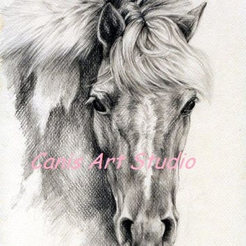 CUSTOM HORSE PORTRAIT, Original graphite pencil drawing from photos, Horse head, Equine art on request, Black White, Personalised memorial