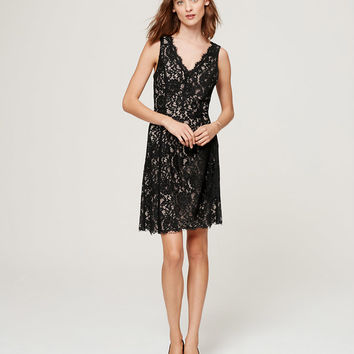 Lace V-Neck Dress | LOFT