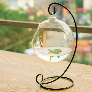 hanging spherical glass vase