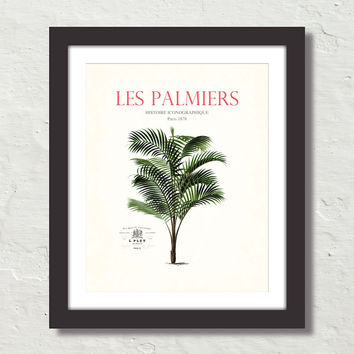 Les Palmiers Vintage French Palm Tree Collage No. 34