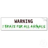 WARNING, I BRAKE FOR ALL ANIMALS BUMPER STICKER from Zazzle.com