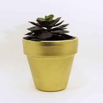 Terracotta Pot, Succulent Planter, Cute Planter, Small Pot, Metallic Gold Planter, Air Plant Holder, Indoor Planter, Succulent Pot, Golden