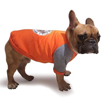 The Hot Dog Clothes French Bulldog Puppy