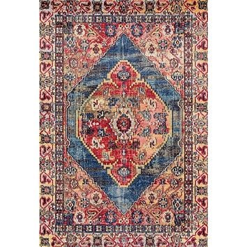 2065 Multi-Color Colorful Distressed Persian Area Rugs