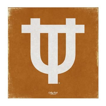 Legacy Athletic Texas Longhorns Vintage Canvas Wall Art (Orange)