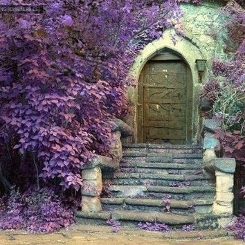 Favorite Places and Spaces / door+purple.jpg (image)