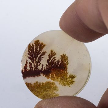 27mm Top Grade Indian Picture Agate