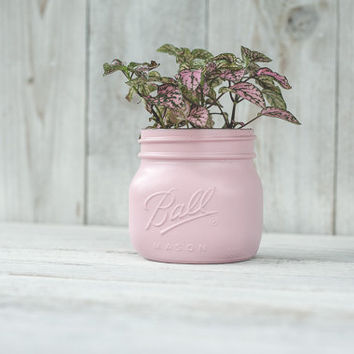 Elite mason jars, painted mason jars, wedding centerpieces, succulent vase, planter, colored jars, plant vases, indoor gardens, mason jars