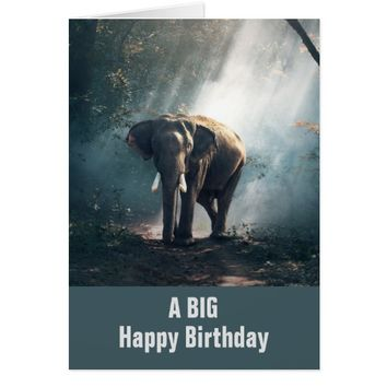 Asian Elephant in a Sunlit Forest Birthday Card