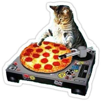 Dj Pizza Cat
