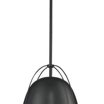 Halley 12-inch Large Pendant Lamp