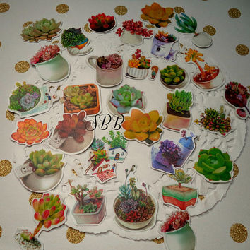 30 Pc. Kawaii sticker flakes Succulents Plants  cute planner stickers, scrapbooking, Snail Mail, Pen pal, School, Stationery, Cell phone.