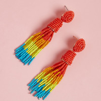 Classy Tassels Beaded Earrings in Rainbow