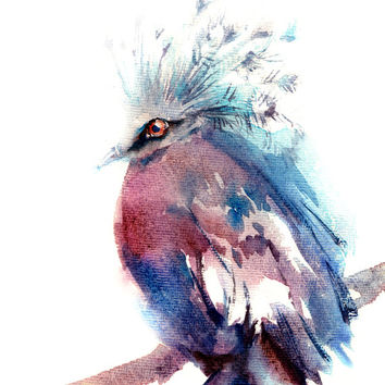 Crowned Pigeon Bird Watercolor Painting Art Print, Watercolour Bird, Wall Art, Bird Illustration, Bird Art, Blue