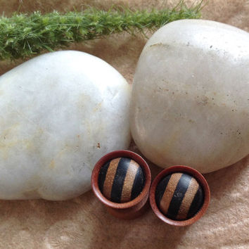 "Fake Gauges, Plugs, ""Saba Stripes"" Handcrafted, Saba Wood, Arang Wood, Natural, Fall Jewelry"