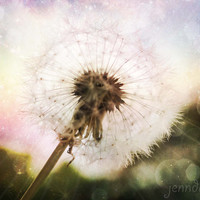 The Big Bang - PHOTO, spring photography, surreal photography, nursery decor, dandelion wall art, dandelion print, nature photography