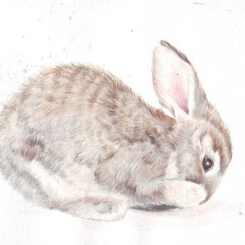 HM102 Original art watercolor painting Bunny by Helga McLeod