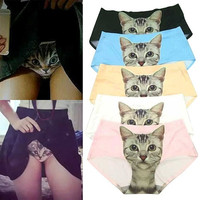 Women's Fashion Creative Underwear Sexy Panties Anti Emptied Cat Printed Seamless Briefs Underpants = 5987537665