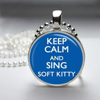 Photo Art Glass Bezel Pendant Soft Kitty Big Bang Theory Necklace