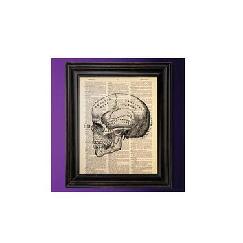 Skull Diagram, Anatomy Decor, Science Art, Dictionary Art Print, Vintage Book Page, Recycled, Upcycled, Geek Decor