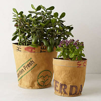 Anthropologie - Reclaimed Tea Sack Planter
