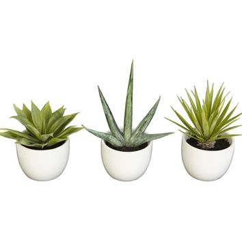 SheilaShrubs.com: Southwest Collection (Set of 3) 4769 by Nearly Natural : Artificial Flowers & Plants