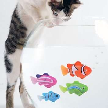 Shop fish cat toy on wanelo for Swimming fish cat toy