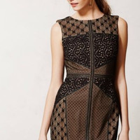 NWT ANTHROPOLOGIE by HEARTLOOM BLACK LACE TOPOGRAPHY SHEATH DRESS M
