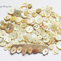 155 Art Deco Buttons, Antique Mother of Pearl Shell Lot