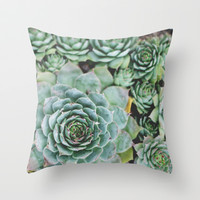Succulents I Throw Pillow by Christine Hall