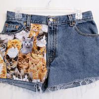 Cat High Waisted Shorts 29 inches