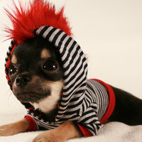 Dog clothes Tiny Teacup Punk Red Mohawk Stripe chihuahua Hoodie size XXS