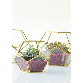 "Hira Glass Geometric Pentagon Terrarium in Gold - 4.5"" Tall x 5.5"" Wide"
