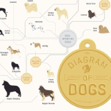 The Diagram of Dogs