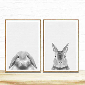 Baby Animal Prints, 2 prints for 9.99, Rabbit Print, Woodland Nursery Decor, Rabbit Art Print, Bunny Wall ART, Bunny Photo, Nursery Room