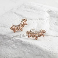 Gold and Glass Crawler Earrings