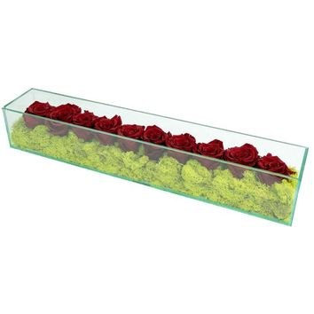 Preserved Roses in Rectangular Glass Burgundy-Red