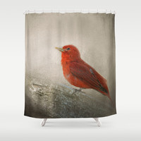 Song of the Summer Tanager 1 - Birds Shower Curtain by Jai Johnson