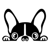 Cute Peeking Dog Decal
