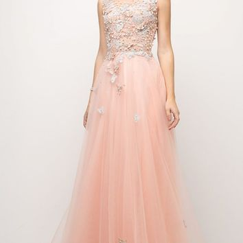 A-line Appliqued Bodice Sleeveless Prom Gown Illusion Back Peach
