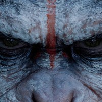Watch Dawn of the Planet of the Apes Full Movie Streaming