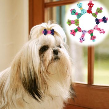 10Pcs Polka Dot Pet Dog Hair Clips Headband Pet Grooming Accessories