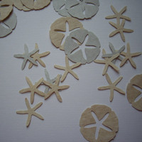 50 starfish and 50 sand dollar punches, embellishment, decoration