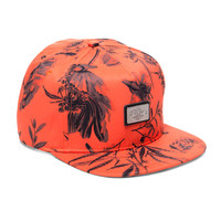 10 Deep: Gold Standard Belt Back Hat H13 - Orange