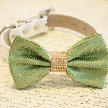 Green Dog Bow Tie Burlap Wedding, Country rustic wedding, Dog Lovers