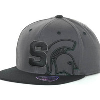 Michigan State Spartans NCAA Slam Dunk One Fit Cap
