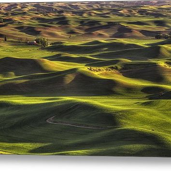 Spring On The Palouse Metal Print By Mark Kiver