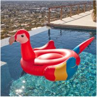 Giant Parrot For Swimming Pools