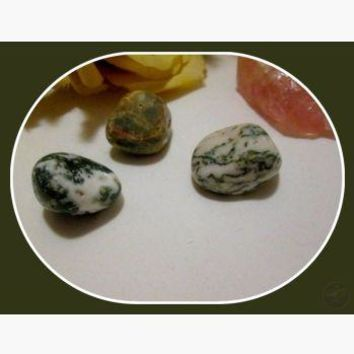 """The Stone of Plenitude"" Green Tree Agate Set"